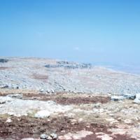 Syria 1962 - XXXI 28.jpg