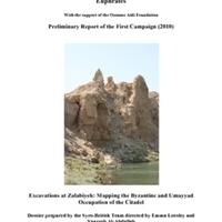 Report 2010.pdf