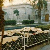 Umayyad Mosque Aleppo.jpg